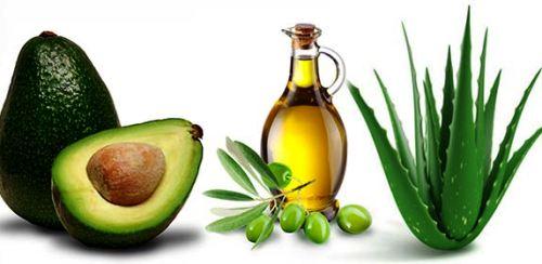 aceite-de-oliva-aguacate-aloe-vera